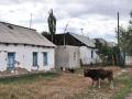 Eurasientour2015-134