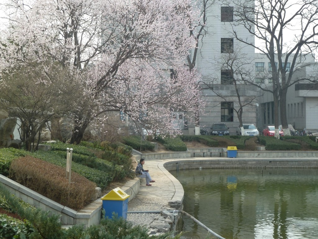 Campus der Beijing Jiaotong University.