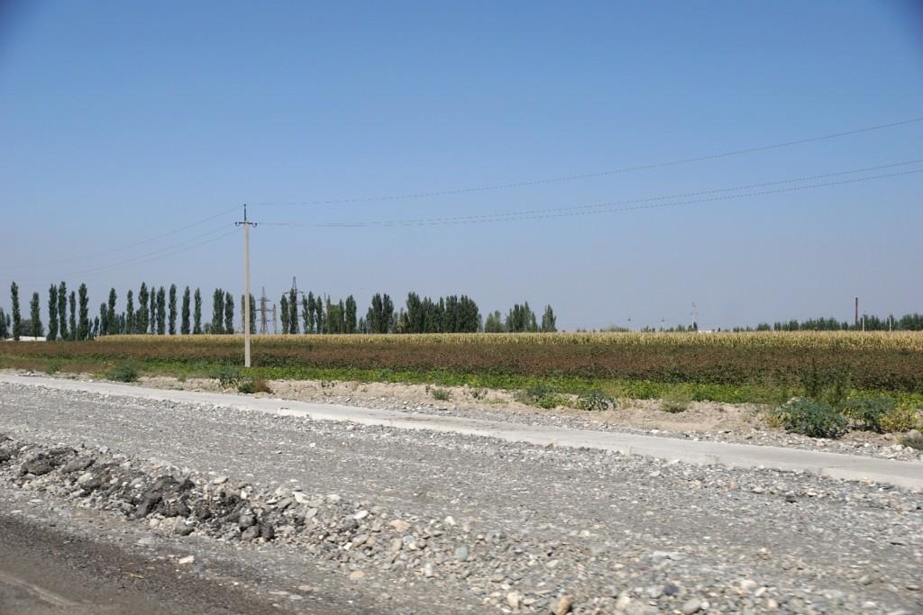 Durch das fruchtbare Ferghana-Tal gen Andischan